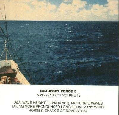 05 - Fresh breeze