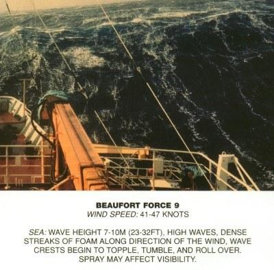 09 - Fort coup de vent